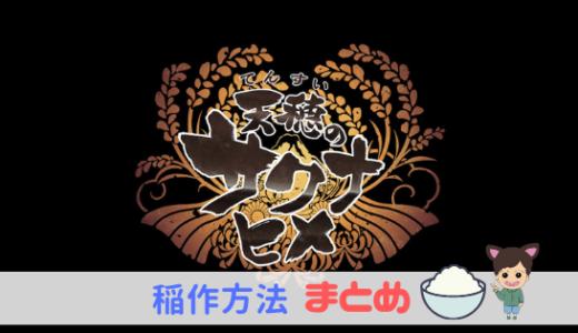 【天穂のサクナヒメ】稲作方法まとめ【メモ】
