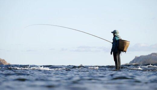 友人が釣りを勧めてくるので、逆に僕は釣りゲームを7本紹介する